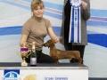 Победитель 4 группы, судья - Костарева Любовь